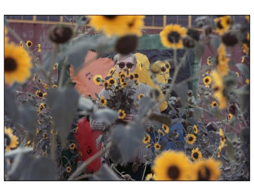 Warhol Flowers IV