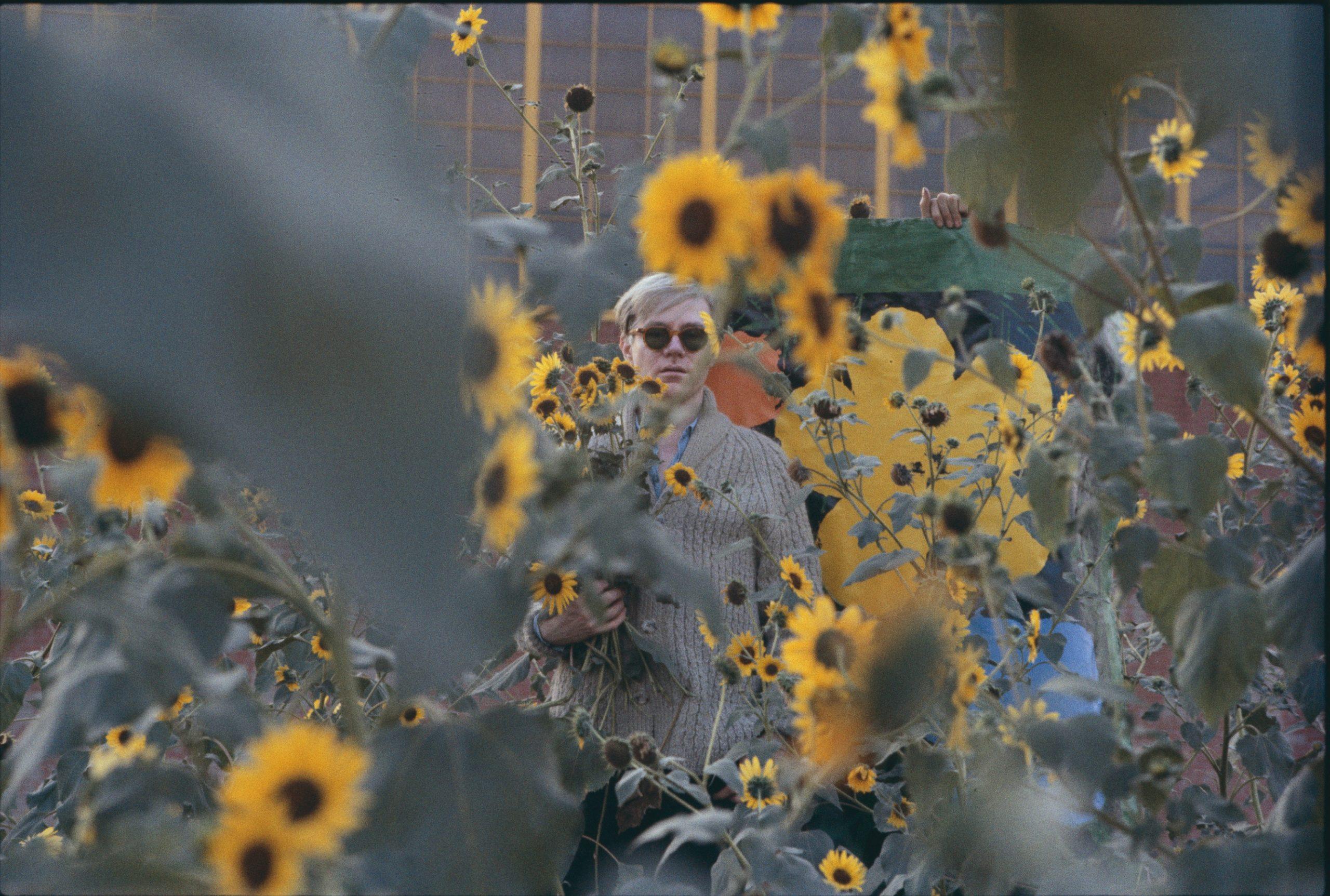 Warhol Flowers XVIIl